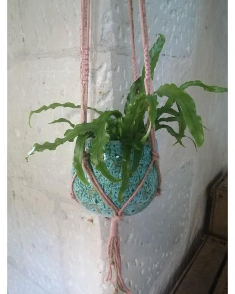 Suspension rose pour plante...